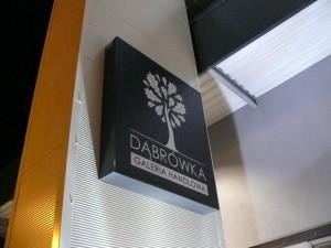 dabrowka-1