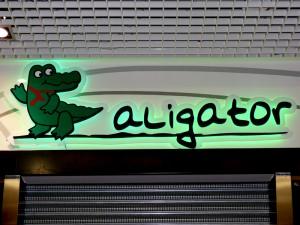 aligator-1