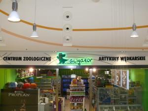 aligator3