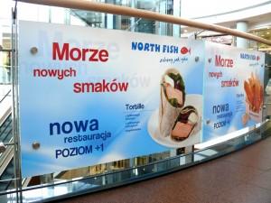 northfish-szyby